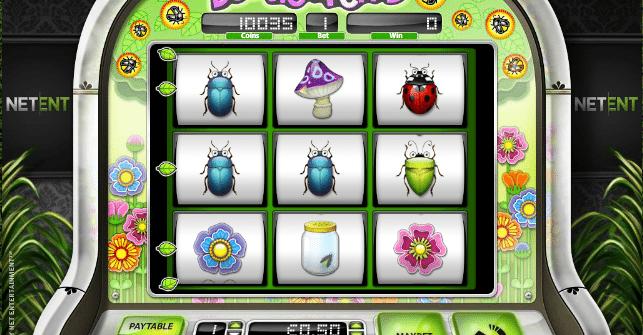 Beetle Frenzy Casino Spiele Online Kostenlos
