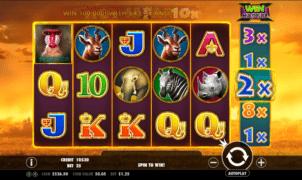 Hot Safari Spielautomat Kostenlos Spielen