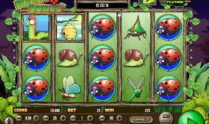 Kostenlose Spielautomat Buggy Bonus Online